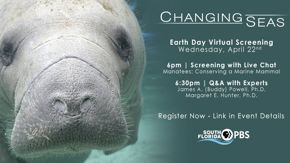 Changing Seas Documentary