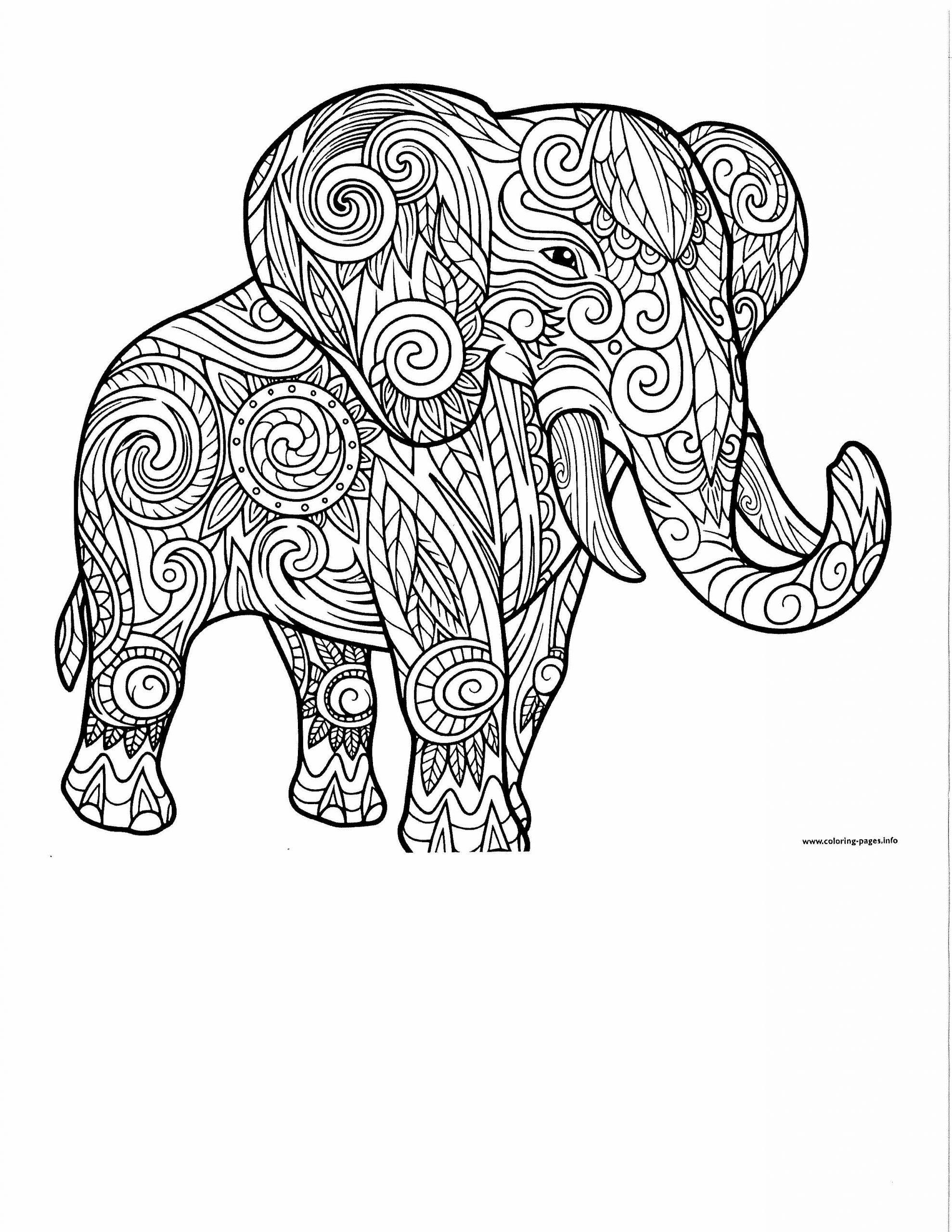 Elephant Color Page
